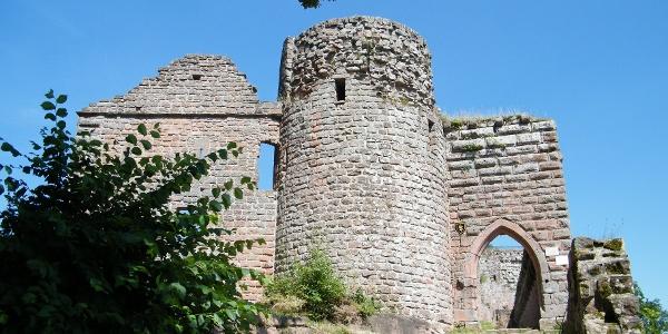 Die Ruine Neuscharfeneck liegt auf einem Ausläufer des Kalkofenbergs in einer Höhe von 501 m.