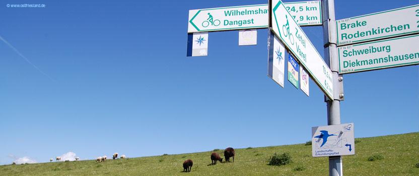 Fahrradwege Ostfriesland Karte.Die 10 Schönsten Fahrrad Touren In Ostfriesland