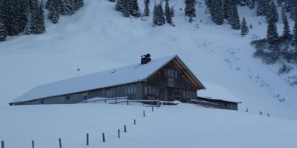 Ober-Alpe im Winter
