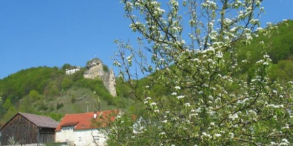 Blick zum Flügelsberg bei Riedenburg (Ortsteil Meihern)
