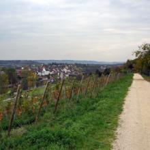 zurück in Gailingen, Blick auf Diessenhofen
