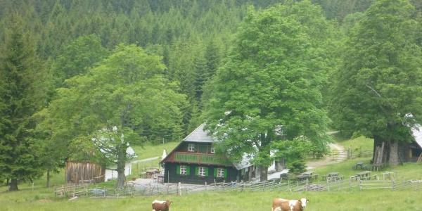 Trahütter Hütte