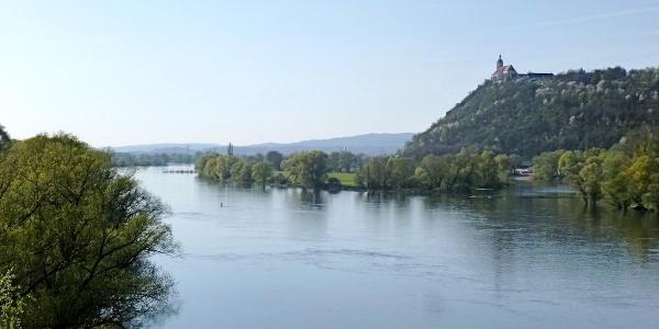 Bogenberg mit Donau