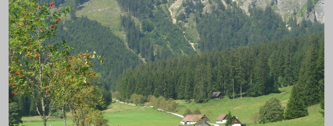 Eisenerzer Ramsau in Richtung Radmerer Hals