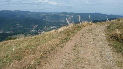 Am Nordhang des Grothkopf. Blick zurück ins Vallee de Munster.