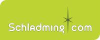 Logo Tourismusverband Schladming