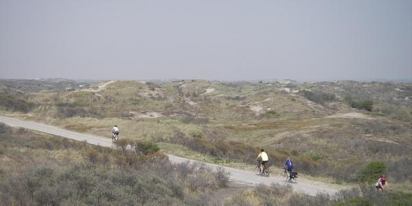 Radeln in den Dünen