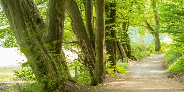 Wanderweg Wurmtal