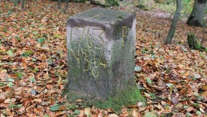 Grenzsteine am Preußensteig in Pfeffelbach
