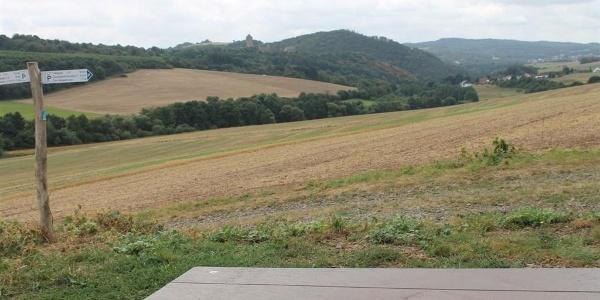Blick auf Burg Lichtenberg
