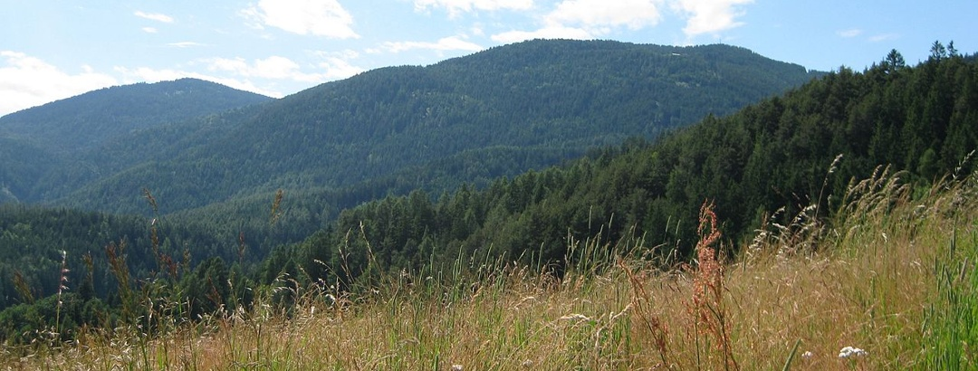 Naturpark Trudner Horn - Parco Naturale Monte Corno