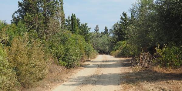 Cesty kolem Agios Georgios