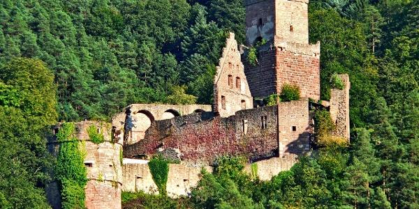Burg Freudenberg in Freudenberg