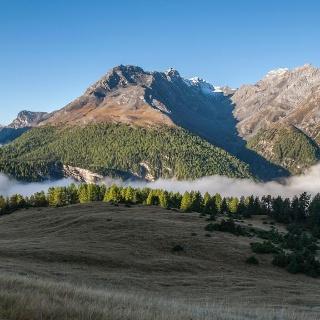 Morgendliche Nebelschwaden auf Alp la Schera. Links hinten befindet sich das italienische Livigno.