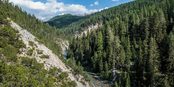 Der Spöl schlängelt sich durch die Wälder des gleichnamigen Tales.