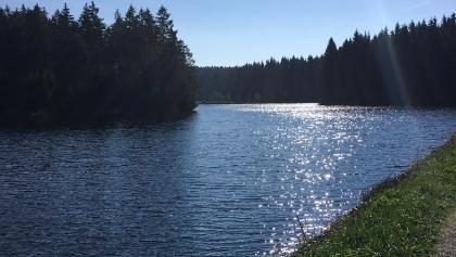 Bärenbrucher Teich