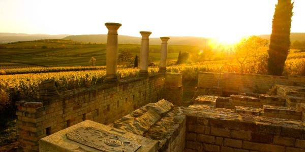 Das Freilichtmuseum Römisches Weingut bei Sonnenuntergang.