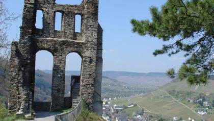 Die Grevenburg hoch über der Mosel