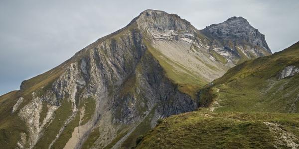 Mit 2459 m stellt der Linkerskopf den höchsten Grasberg der Allgäuer Alpen dar