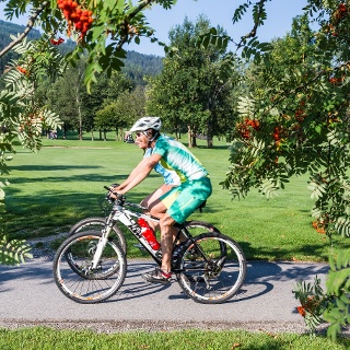 Mountainbike Königslehen
