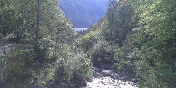 Panorama dalla Baita Ciclamino.