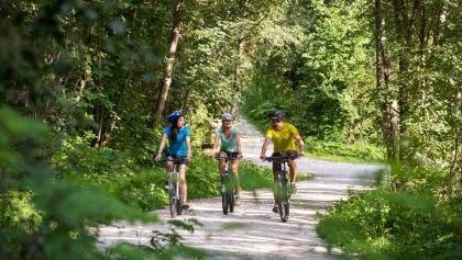 Radfahren in der Ferienregion Kronplatz