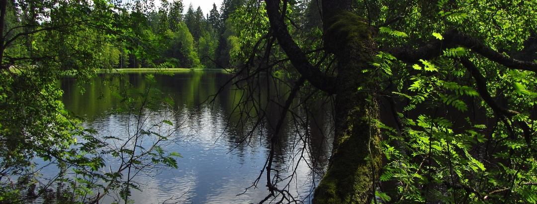 Blick vom Waldrasthaus auf den Karchessee