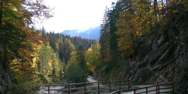 der Geopfad zur Gufferthütte im Ampelsbach-/Filzmoosbachtal