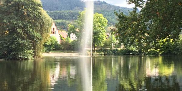 Der Stadtsee in Staufen