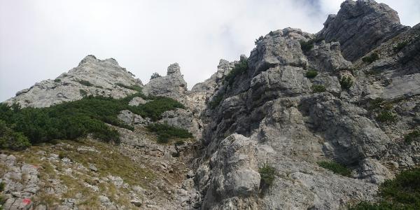 Unterhalb des Gipfels der Kohlberg-Spitze