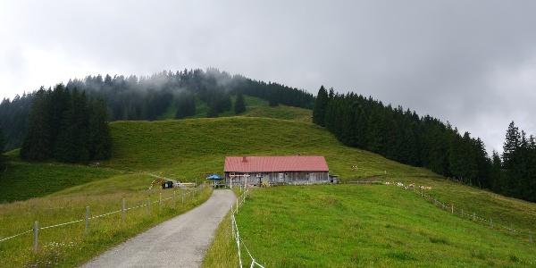Fahnengehren-Alpe