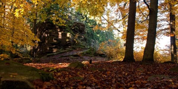 Kälbersteine im Herbst