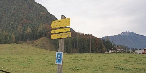 Schilderbaum beim Parkplatz