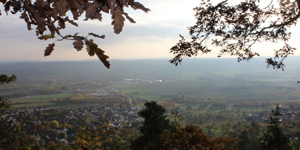 Blick vom Kaiserwirt's Bergle Herrenberg