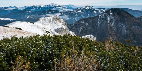 Brger- Mitter- Flzalm - Alpenregion Hochschwab