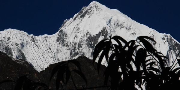 Annapurna II seen from Koto
