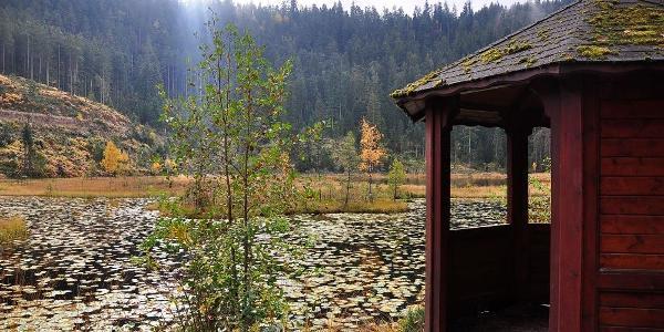 Schutzhütte, schwimmende Insel und Seerosenblätter.
