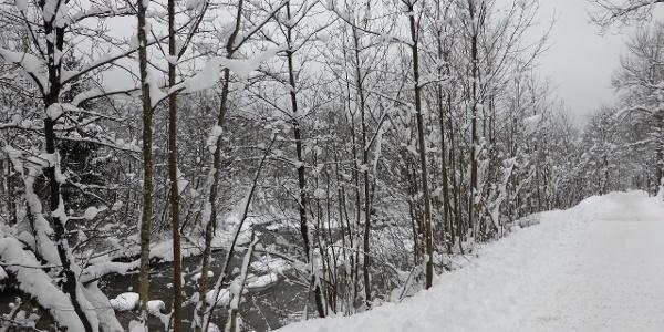 Illweg - Winterwanderung von St. Anton im Montafon - Schruns