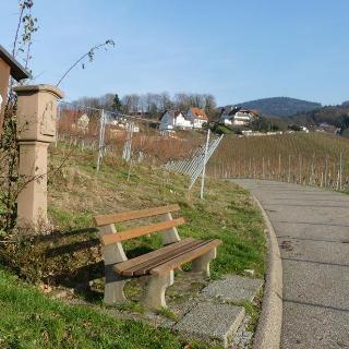 Beginn des Weinlehrpfades im Ralschbach