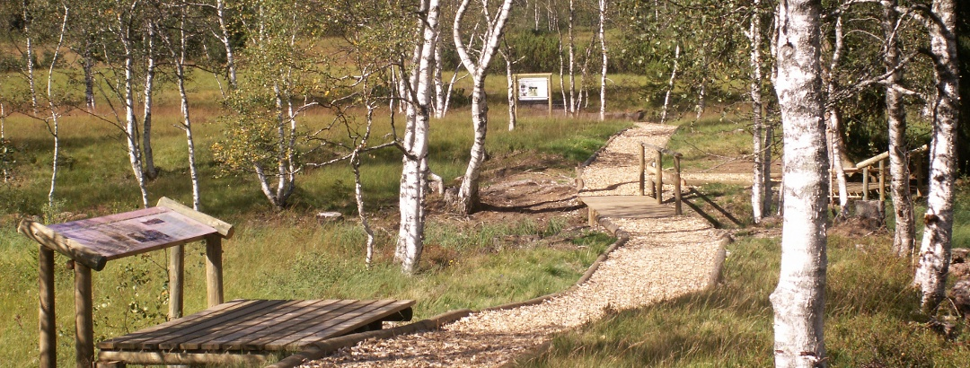 Themenweg am Hochmoor Wasenmoos