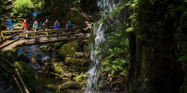 Wasserfall, Menzenschwand