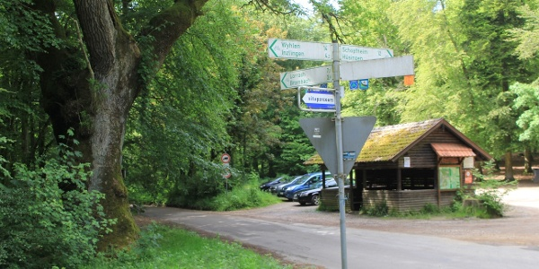 Rastplatz an der historischen Kreuzeiche im Wald