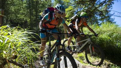 Tour Monte Tramontana Naturno