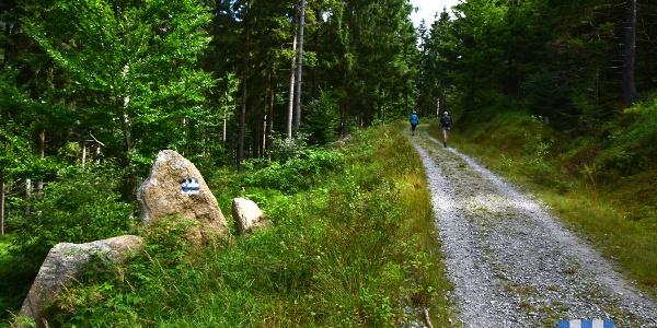 Nordwaldkammmarkierung bei Oberschwarzenberg