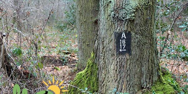 Wegekennzeichen A17