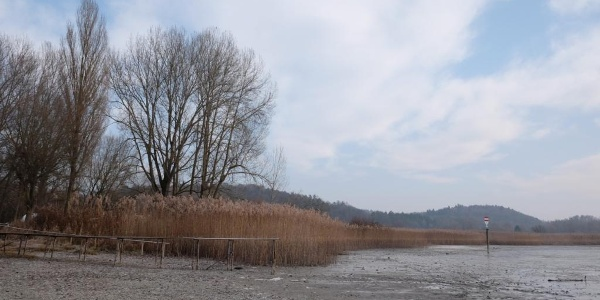 Wollmatinger Ried bei Hegne