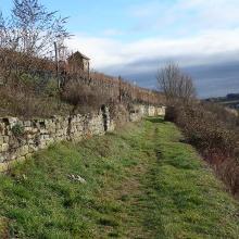 Seltene Ausnahme: Unbefestigter Weg durch Weinberge