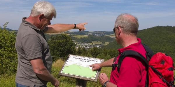 Blick vom Wabelsberg