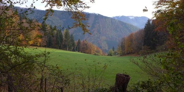 Zwischen Schöngrabenspitze und Schöngraben