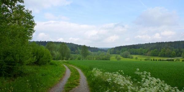 Blick ins Monbachtal